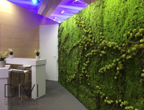 Rendi ogni ambiente Green con zero manutenzione
